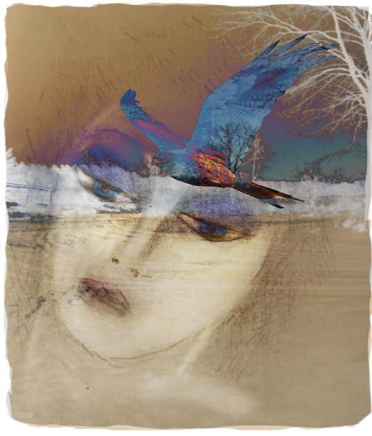 Annette Hoff-Jessen,digital-art,digitalprint,Atelier-Kaiserborgen